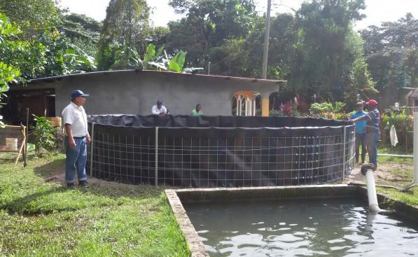autoridad de los recursos acu ticos de panam colocan On tinas para criar tilapia