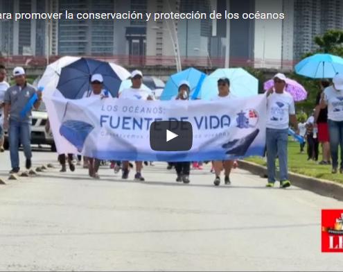 caminata-para-promover-la-conservacion-y-proteccion-de-los-oceanos