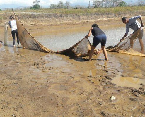 Drenado de estanques y arrastre de redes