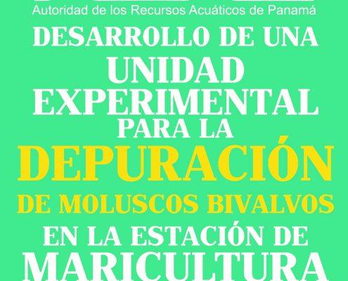 depuracion-feria-web-01 (2)