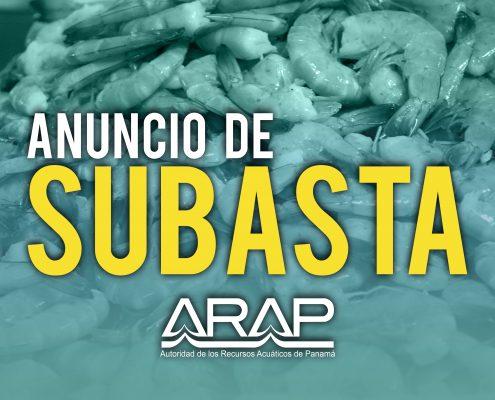 SUBASTA-01